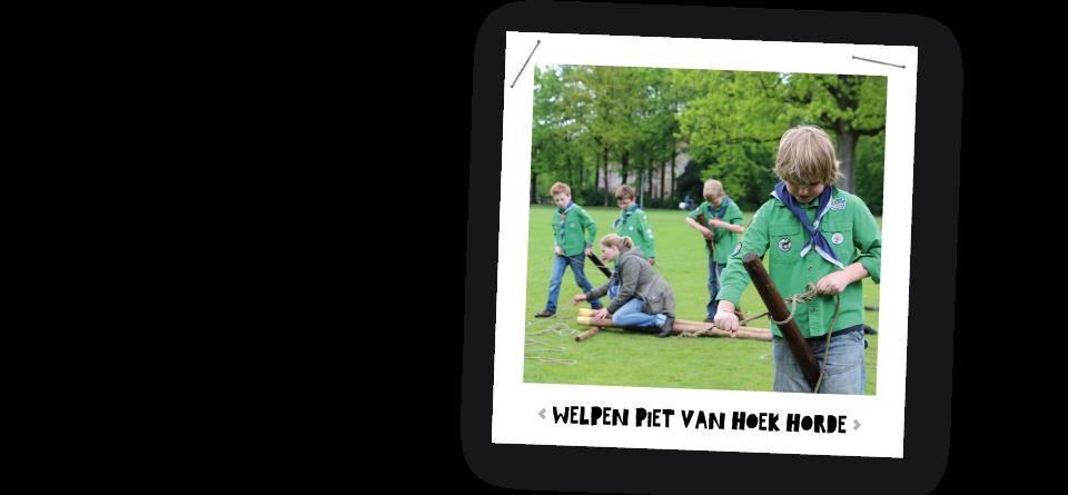 Welpen Piet van Hoek horde